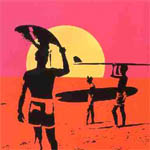 surfen endless summer